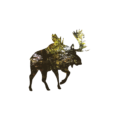 Minimalist Majestic Moose 11x14