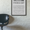 Things We Learn From Cats - 11x14 - Gray